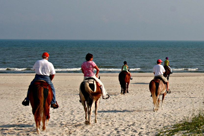 Beach Horseback Riding Wine Tasting Discover Outdoors Date Idea City Tour Sightseeing