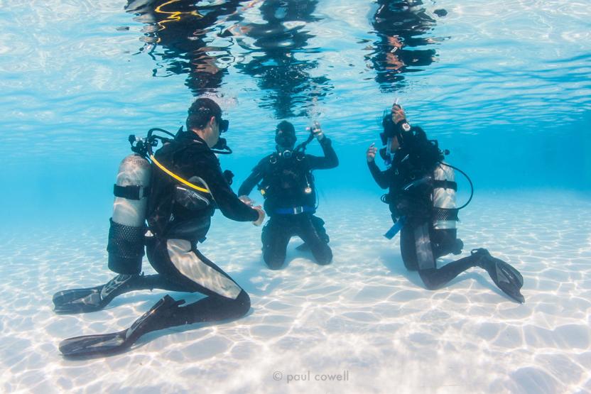 Intro To Scuba Northeast Scuba Diving Scuba Diving Scuba