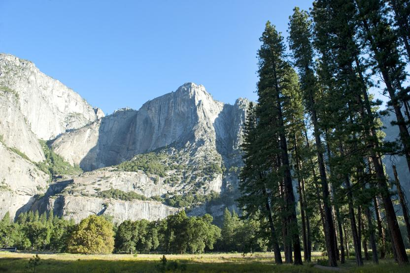 Evergreen Escapes Yosemite