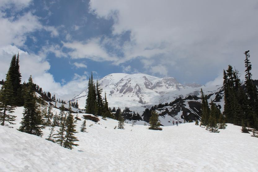 Evergreen Escapes Mt Rainier