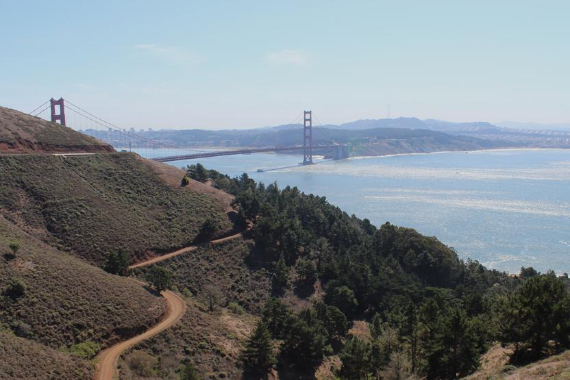 Evergreen Escapes Natural Wonders Of San Francisco
