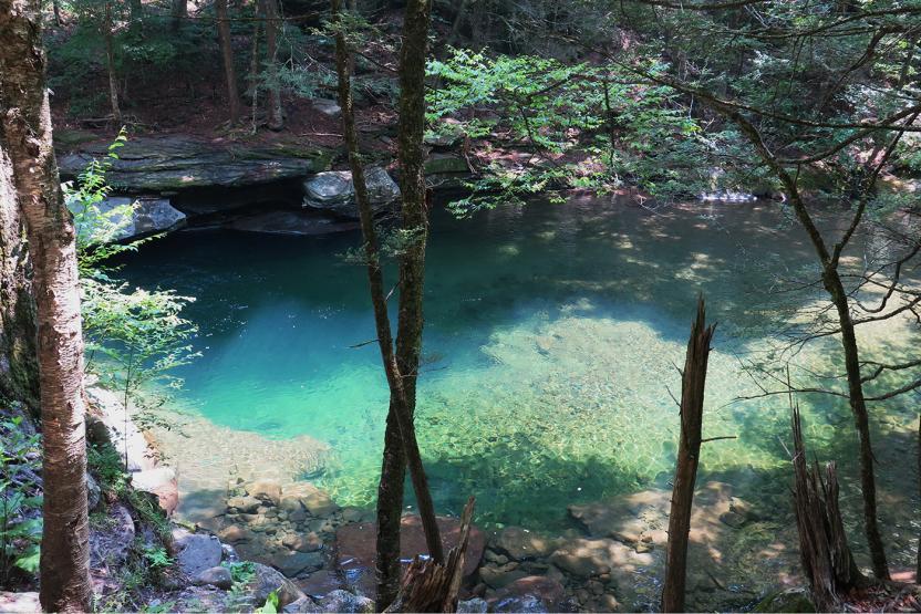 Go Wild NYC Peekamoose Blue Swimming Hole