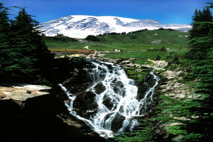 Mt Rainier Walk Snowshoe Tour
