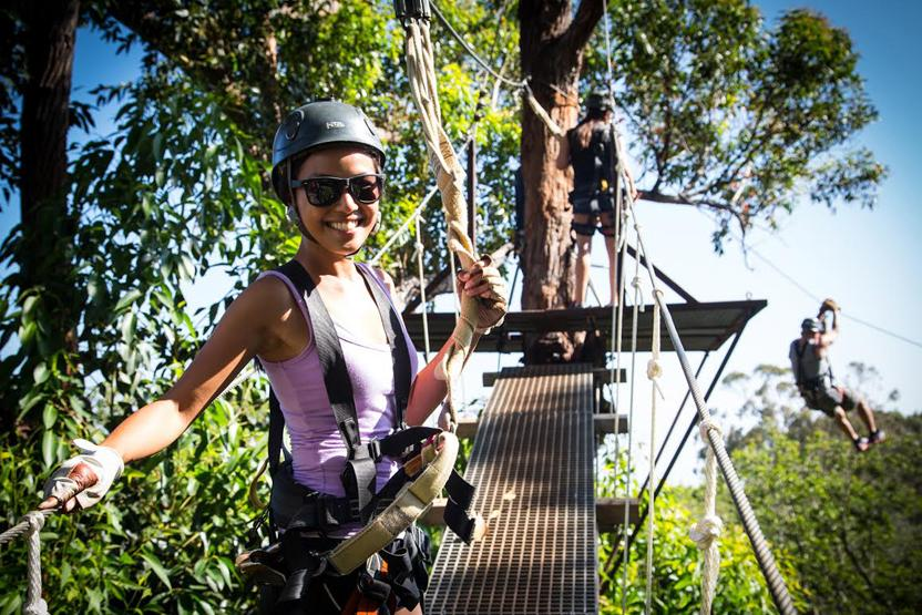 NorthShore Zipline Co