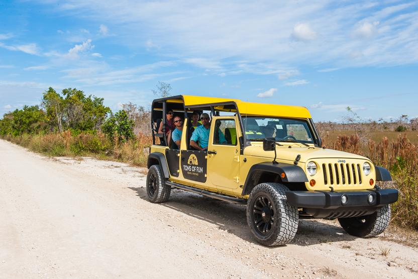 Tons Of Fun Tours Everglades