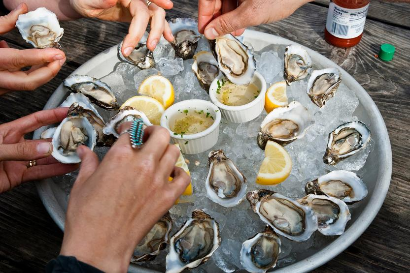 West Marin Food Farm Tours Oyster Lovers