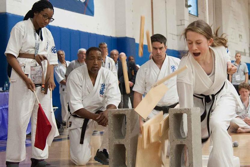 World Seido Karate
