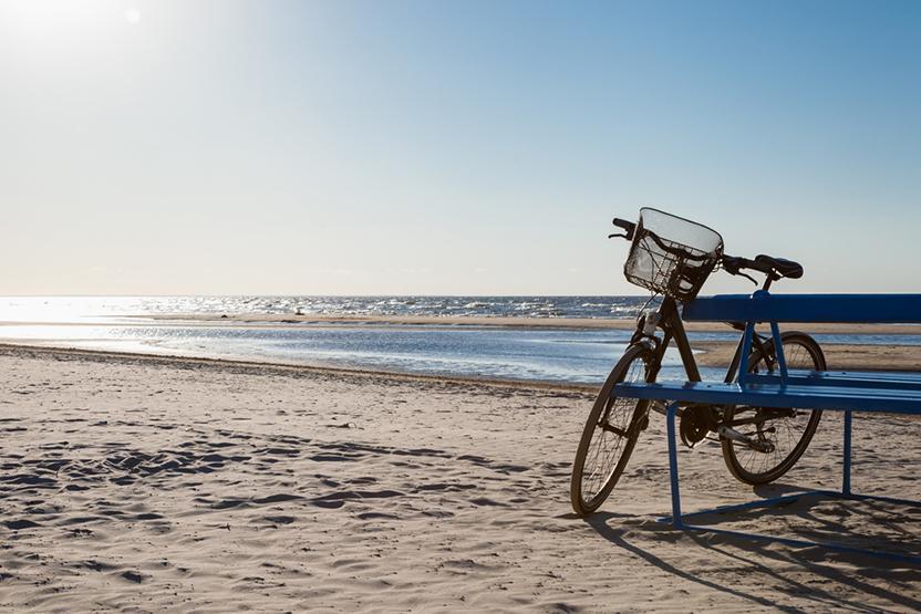 Wine Country Sip N Cycle Bike Tour Healdsburg Getaway