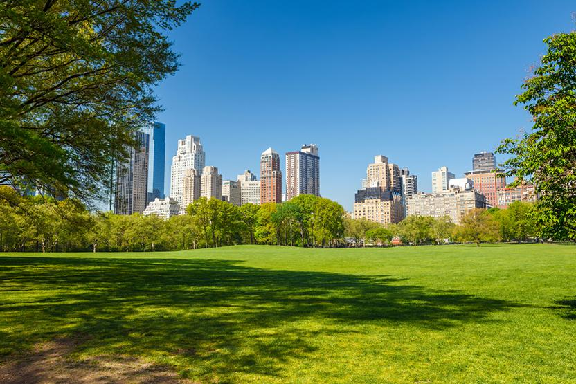 Central Park Walking Tour