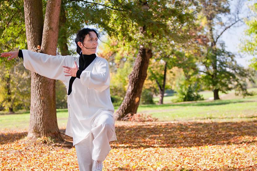 Chi Kung Qi Gong
