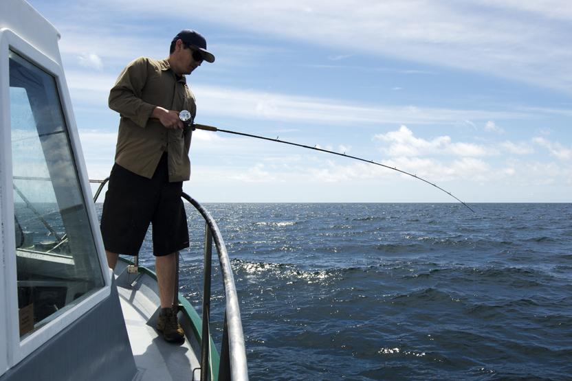 Deep sea fishing tour things to do in orlando for Deep sea fishing houston