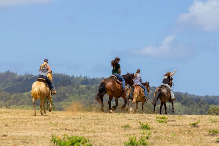 Gunstock Ranch Scenic Ride