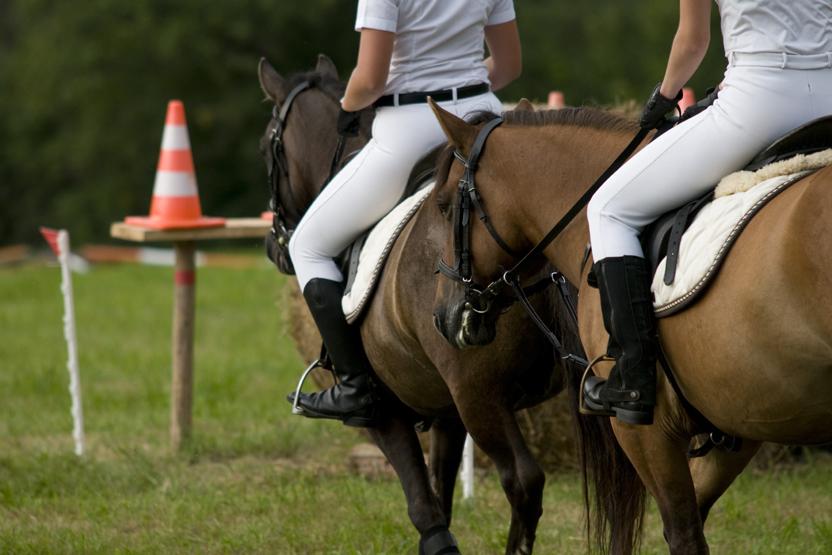 Horsebacking Riding Lesson