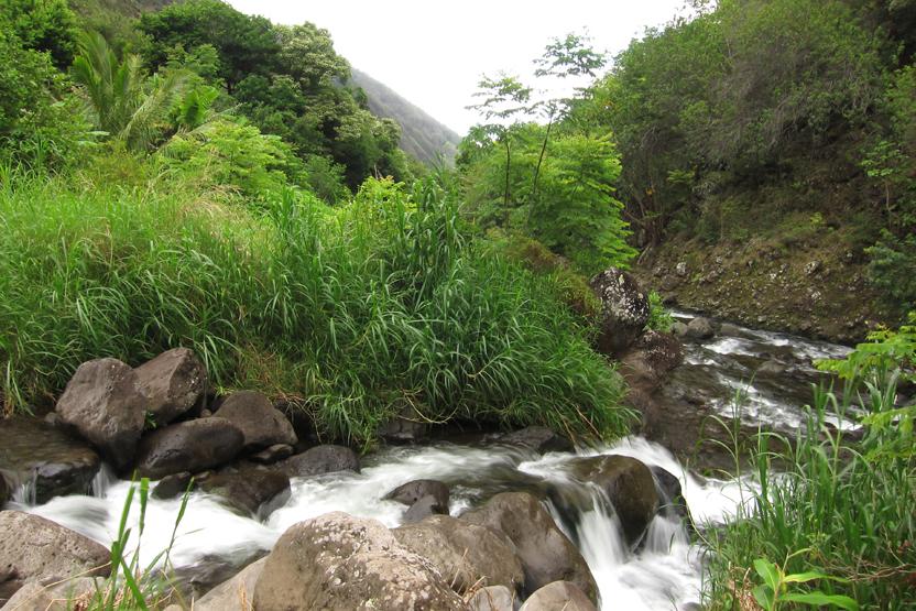 Iao Valley