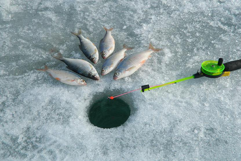 Ice fishing full day whitefish trip ice guides for Wisconsin ice fishing resorts