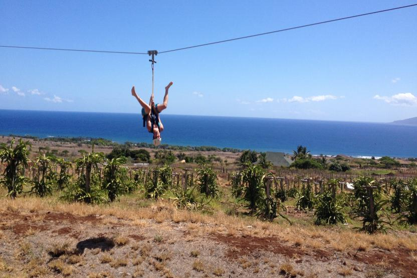 Maui Dragon Fruit Farm Zipline Adventure Tour