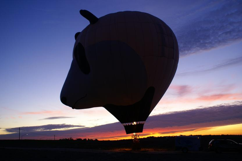 Panda Air Balloon Flight