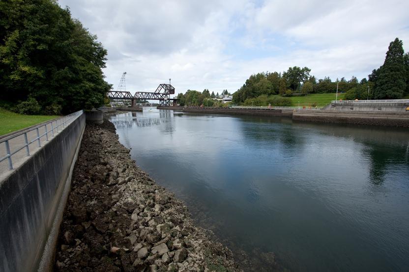 Seattle Locks