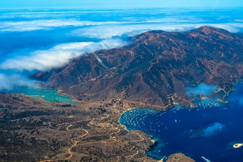 V Catalina Island 10864