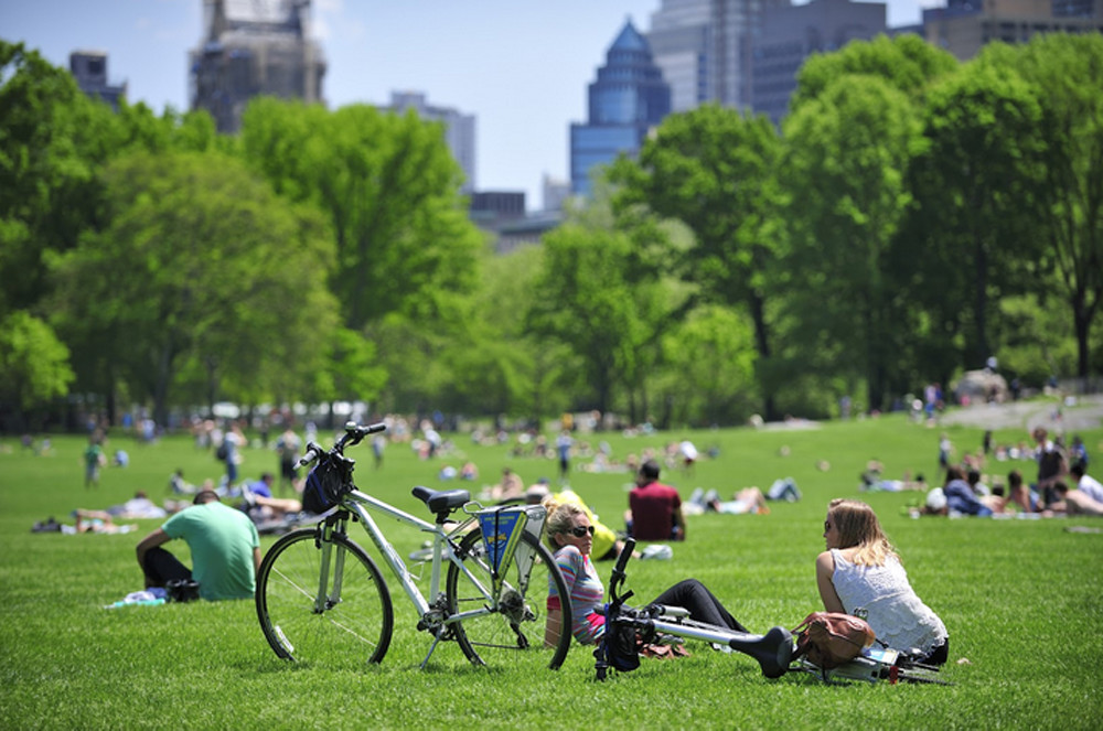 The Best Budget Activities for Every New Yorker