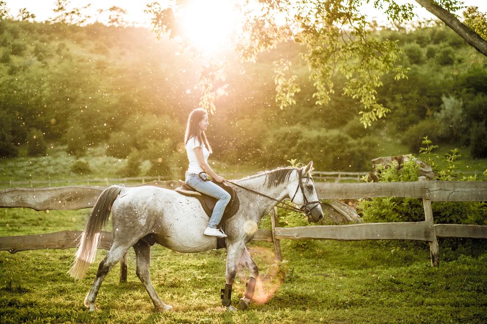nyc-horse-riding-wine-tasting-vimbly