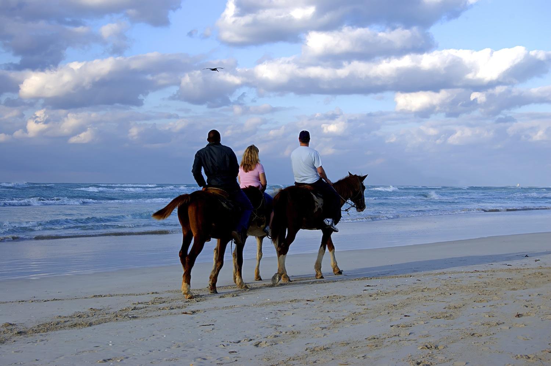 honolulu-date-horseback