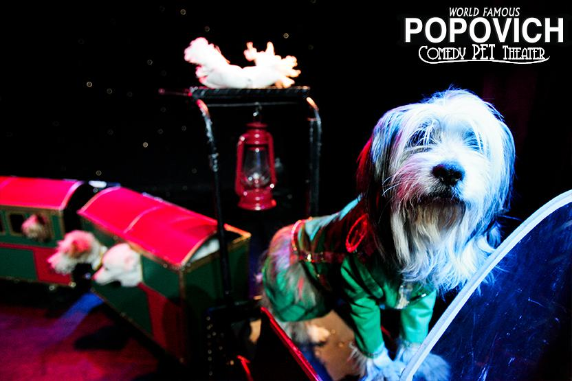 egas-date-ideas-pet-theater-vimbly