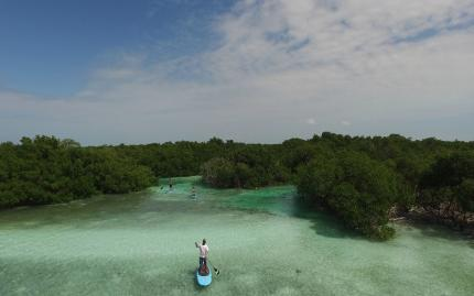 Key West Paddle SUP