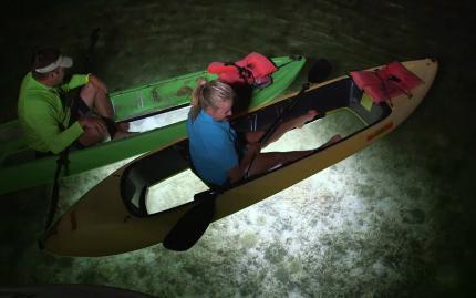 Key West Paddle Boat Charter