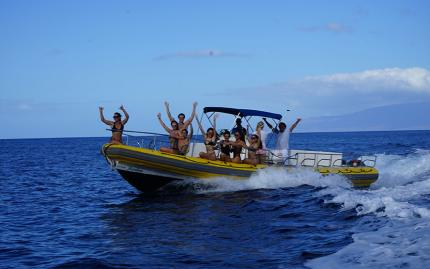 Maui Reef Adventures Whale Watch