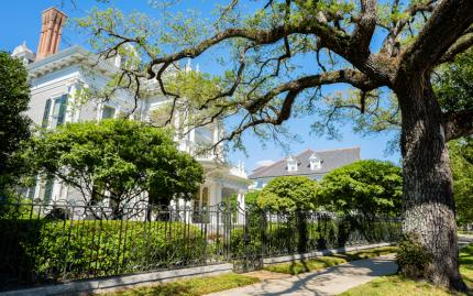 New Orleans Oak Street