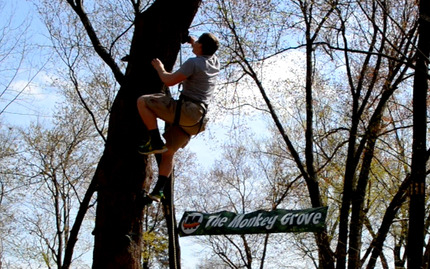 The Adventure Park At Sandy Spring Monkey Grove