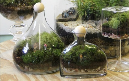 Moss Terrarium Workshop
